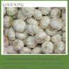 New Season Price Wholesale Natural Fresh Garlic from China