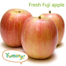 Fresh Fuji apple fresh fruit and veget