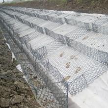 Chicken Wire Cage Rock Wall Gabion Mats (Reno Mattress)