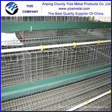 poultry farm products/poultry farm drinking system popular in kenya , Uganda, Nigeria , Mozambique,south africa