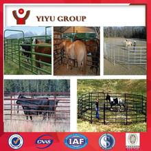 Australian Standard 2.1mx1.8m Cattle Panel /horse yard/sheep yard