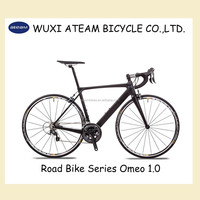Full Carbon Bike 22 Speed Road Racing Bike