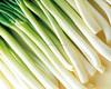 /product-gs/fresh-chinese-onion-fresh-chinese-onion-60203424301.html