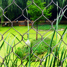 Bird cages fence stainless steel wire mesh