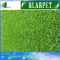 Modern most popular artificial grass sports field