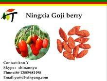 Wholesale 2015 high quality dried goji berries/lycium barbarum