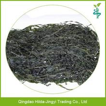 High quality dried sea kelp used for sushi seaweed