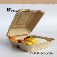 biodegradable food storage container with divider