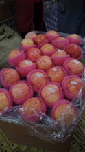 Chinese fresh paper bagged red fuji apples