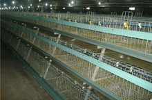 Agricultural Equipment bird breeding cages/Chicken Egg Layer Cages/rabbit cages