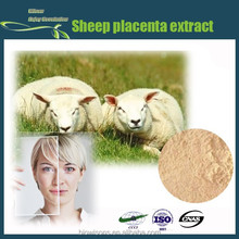 Nature's pure sheep placenta extract,high quality sheep placenta