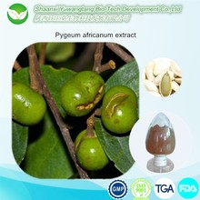 GMP Factory Provide 2.5%-13% Total Sterols Pygeum Africanum Extract