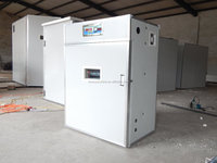 Tanzania best selling automatic egg incubator combined setter and hatcher for sale