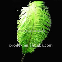 Green Ostrich feathers for wedding decroation party decoration