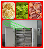food and snacks air fan drying machine/small fruit drying machine/drying machine