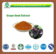 GMP factory supply Goods in stock High quality Grape Seed Extract