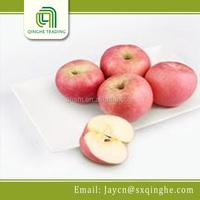 bulk fresh fruit fuji apples wholesale