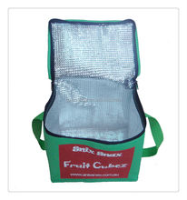Picnic solar non woven cooler bag for insulating effect