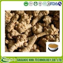 Natural Radix Notoginseng Extract Powder