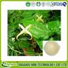 GMP Certificate 100% Pure Natural icariin 50 60 80 98 epimedium extract