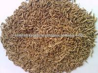 Indian Best Quality Cumin Seeds