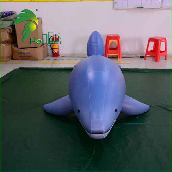 inflatable dolphin (2)