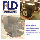 Ac trifásico gerador cabeça 50 kva 100 kva FLD224