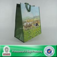 Custom Cheap Reusable Non Woven Shopping Bag Handbags Made In China