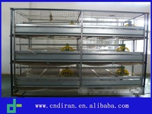 Broiler Farm Equipment H Type Breeding Cage Sold Low Price