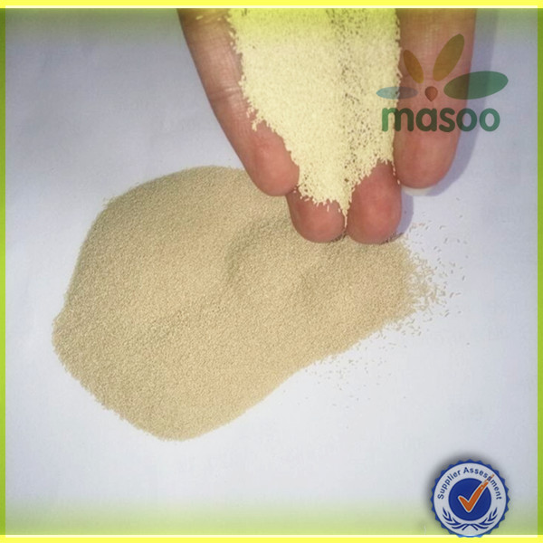 Pure Natural Instant Active Baker's Dry Yeast