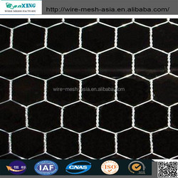 "3/4"" (PVC / Hot / Electric) Hexagonal Mesh/High Quality Chicken Wire Mesh in Good Price"