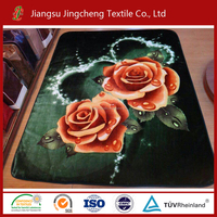 Hot Sale 100% Polyester super soft mink blanket/Raschel Blanket JCBL-R04004