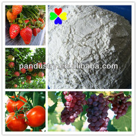 CAS NO.36734-19-7 96%TC, 50%WP,500G/L SC Best Prices Fungicide Iprodione/Rovral