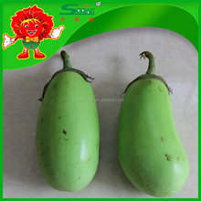 2015 organic fruit egg plant for health and skin beatuy