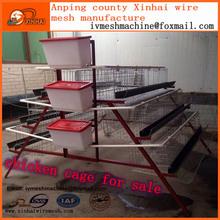 chicken coop design for chicken farm