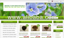 Online Shop and Web Site Creation