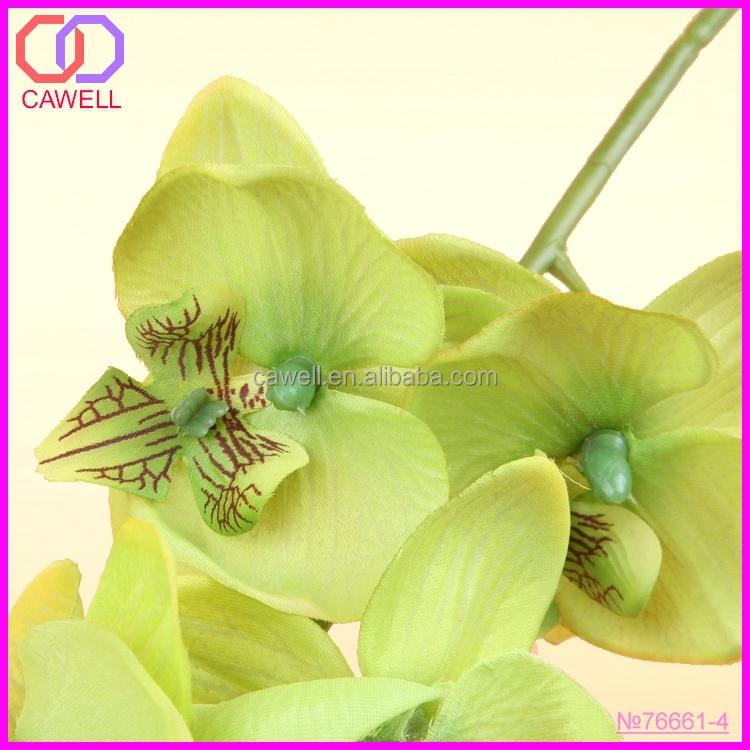 Orchids Wholesale Thailand Wholesale Artificial Thailand