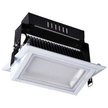 High power 38w Shoplighter LED for Commercial or gym from Rise Lighting