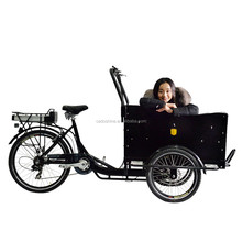 Best popular tricycle two front wheel