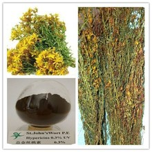 Top quality Pure Hypericum perforatum extract hypericin /big discount now