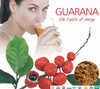 Top quality Guarana extract 10%,12% / Natural Caffeine powder / Natural Guarana extract 10:1 20:1