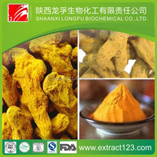 Manufacturer sales turmeric extraction plant
