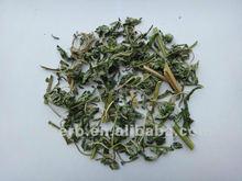 Yi Mu Cao/Motherwort herb/natural herbs