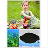 Organic Seaweed Garden Fertilizer