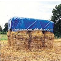 China 160g/m2 waterproof and fire resistant tarpaulin
