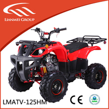 125cc cool sports atv with CE/EPA made in zhejiang for sale
