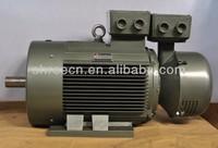 YR3 Series Low-voltage Slip ring Motor (IP55)