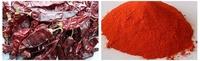Single Spice&Herbs Xinjiang Dried Sweet Paprika Powder160ASTA