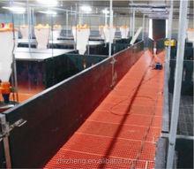 Iniezione di materie plastiche 700*700mm porcilaia pavimento a doghe