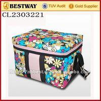 12v can cooler bag warmer